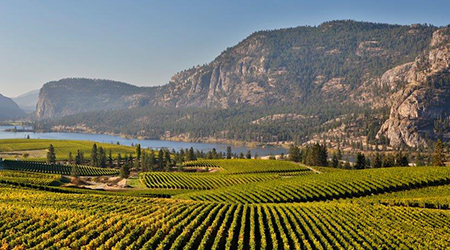 | Kelowna Wine, Boat & Canyon Tours | Cheers! Okanagan